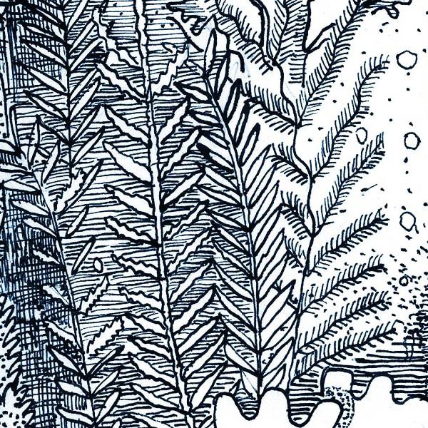 seaweed as ink Morris & co - seaweed 28008 ink some sizes are part of our 20% off end of  summer sale material viscose, wool free delivery.